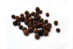 Pimenta da Jamaica Imagem de Stock