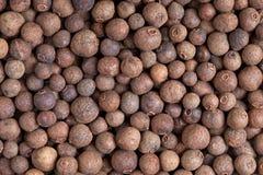 Pimenta da Jamaica (pimenta de jamaica) Foto de Stock