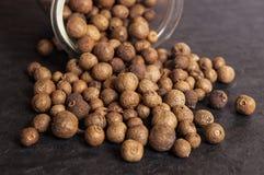 Pimenta da Jamaica (pimenta de Jamaica) Fotos de Stock