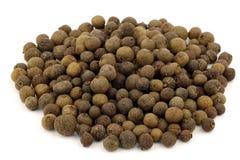 Pimenta da Jamaica secada (pimenta de Jamaica) Foto de Stock Royalty Free