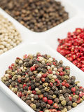 Pimenta da mistura Foto de Stock