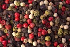 Pimenta da mistura Foto de Stock Royalty Free