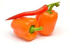 Pimenta da paprika e de pimentão Imagem de Stock Royalty Free