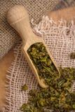 Pimenta de Bell verde Foto de Stock