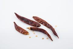 Pimenta de caiena vermelha secada do pimentão ou dos pimentões isolada no backg branco Imagens de Stock Royalty Free