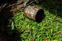 Pimenta de pimentão Imagens de Stock