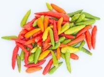 Pimenta de pimentão colorida com fundo do isolamento Foto de Stock