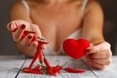 Pimenta de pimentão que pendura nas mãos da mulher fotografia de stock