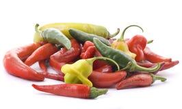 Pimenta de pimentão quente Imagens de Stock Royalty Free