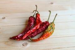 Pimenta de pimentão secada Imagens de Stock