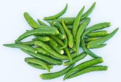 Pimenta de pimentão verde com fundo do isolamento Fotos de Stock Royalty Free