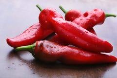 Pimenta de pimentão vermelho Herb Ingredient orgânico fresco para a venda no mercado imagens de stock