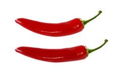 Pimenta de pimentão vermelho sobre o fundo branco Foto de Stock