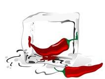 Pimenta de pimentões Imagens de Stock