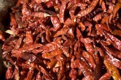 Pimenta de pimentões encarnado Fotografia de Stock