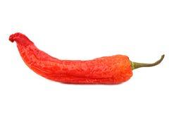 Pimenta de pimentões vermelhos Imagens de Stock Royalty Free
