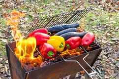 A pimenta de sino dos vegetais e as beringelas são grelhadas em um fogo aberto acampar fotografia de stock