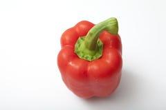 Pimenta de sino vermelha Foto de Stock Royalty Free