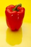 Pimenta de sino vermelha Fotos de Stock