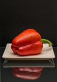 Pimenta de sino vermelha em um fundo preto Fotografia de Stock Royalty Free