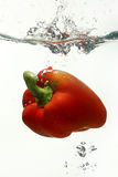 Pimenta de sino vermelha na água Imagem de Stock Royalty Free