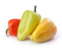 Pimenta doce Foto de Stock Royalty Free