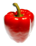 Pimenta doce vermelha Imagem de Stock Royalty Free