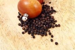 Pimenta e abanador Fotografia de Stock