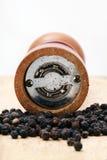 Pimenta e abanador Imagem de Stock