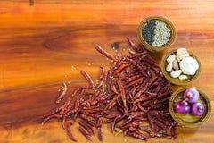 Pimenta e ingredientes da especiaria Fotografia de Stock Royalty Free