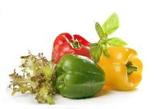 Pimenta e verde Imagem de Stock