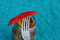 Pimenta enlatada vermelho em uma forquilha do ferro Fotos de Stock