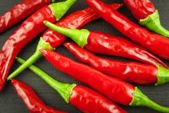 Pimenta fria vermelha no fundo preto de madeira Pimentas de pimentão encarnados Queimadura extra dos pimentões quentes do cultivo Imagens de Stock