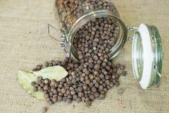 Pimenta jamaicana de Ienibahar Fotos de Stock