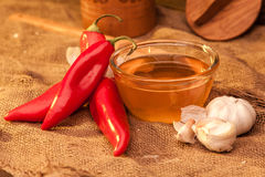Pimenta, mel e alho de Ramiro Imagens de Stock