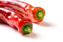 Pimenta orgânica vermelha do petisco, bellpepper com copyspace foto de stock royalty free