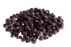 Pimenta preta Imagem de Stock