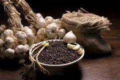 Pimenta preta, alho, cravos-da-índia de alho, pimenta branca Fotografia de Stock