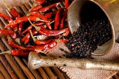 Pimenta preta em uma cubeta e em uma folha de louro Fotos de Stock Royalty Free