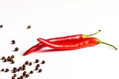 Pimenta quente e picante Foto de Stock Royalty Free