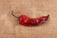 Pimenta seca vermelha em um sackcloth Foto de Stock Royalty Free