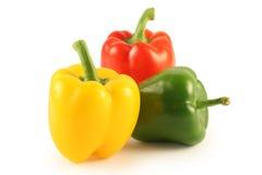Pimenta três multi-coloured Foto de Stock