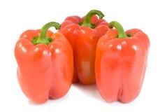 Pimenta três vermelha Fotografia de Stock