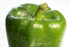 Pimenta verde foto de stock