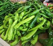 A pimenta verde Fotografia de Stock