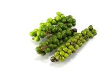 Pimenta verde Imagens de Stock