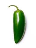 Pimenta verde do Chile Imagens de Stock
