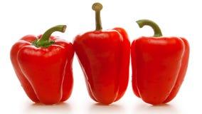 Pimenta vermelha Fotografia de Stock