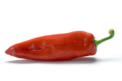 Pimenta vermelha foto de stock
