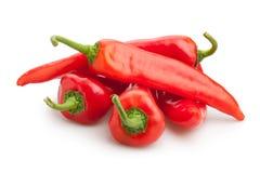 Pimenta vermelha Fotos de Stock
